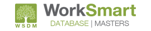 WorkSmart Database Masters logo on white background